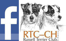 tl_files/bilder/2011/facebook_rtc_logos.jpg